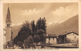 "0889""STRIGNO  (TRENTO) VILLA COI MONTI PANAROTTA  E FRABOT "" . ILL. ORIG. - Trento"
