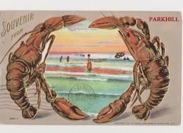 Carte Fantaisie Gaufrée Avec 2 Homards Et Vue Sur Mer /Souvenir From Parkhill ( Canada ) - Poissons Et Crustacés