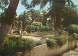 ALGERIE -  AÏN TEMOUCHENT - LE JARDIN PUBLIC - Autres Villes