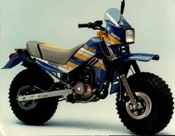 Fantic Koala  +-22cm X 15cm  Moto MOTOCROSS MOTORCYCLE Douglas J Jackson Archive Of Motorcycles - Photographs