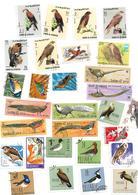 """Lot Timbres """"oiseaux"""" Différents  Sans Charnière Bon état - Colecciones & Series"""