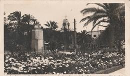 Cartolina  - Postcard / Viaggiata - Sent /  Gran Canaria Las Palmas - Giardini - Gran Canaria