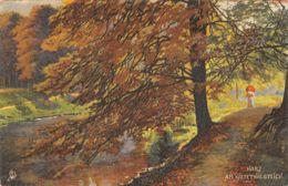 Illustrateur (Fantaisie) - Serie Harz Postkarten 215B - Oilette - [1] - Illustrators & Photographers