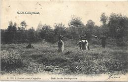 Heide-Calmpthout - Zicht In De Heideputten (Hoelen N°1282) - Kalmthout
