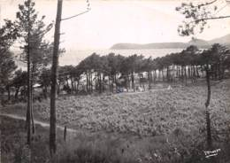 CAVALAIRE SUR MER  Camping Sur La Plage  7 (scan Recto Verso)KEVREN0729 - Cavalaire-sur-Mer