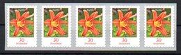 """Deutschland Mi. 3516** """"Freimarke Blumen: Taglilie"""" 5er Selbstklebend Postfrisch - Neufs"""