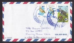Guyana: Airmail Cover To USA, 2008, 3 Stamps, Eagle Bird Kills Monkey, WWF Panda Logo, Rare Real Use (left Stamp Damaged - Guyana (1966-...)