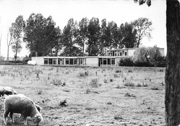 Dominiek Savioschool - Moorsele - Wevelgem