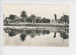 Tunisie : Salammbo, Port Punique (cp Vierge N°811) - Tunesië