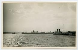 POSTCARD SIZE PHOTO : HARBOUR SCENE - Boats