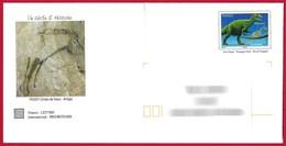 France - Prêt à Poster (PàP 158) - Centenaire Découverte Grotte De Niaux, Peintures Rupestres. Dinosaure : Allosaure. - Préhistoire