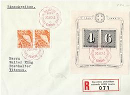 SUIZA HB Nº 9 En Sobre. - Covers & Documents