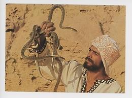 Boubakar Et Les Vipères à Cornes - Dresseur De Serpent - Cirque (cp Vierge) Tozeur Tunisie - Professions
