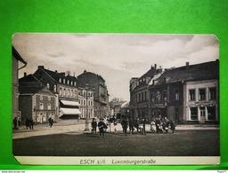 Esch-Alzette, Luxemburgerstrasse. P. C. Schoren - Postcards