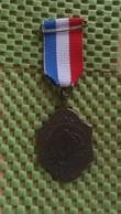 Medaille :Netherlands  -  Wandelsportorganistatie ( Knblo) Nederland  / Vintage Medal - Walking Association . - Niederlande