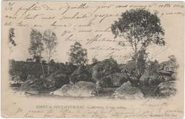 Forêt De Fontainebleau - Marlotte , Le Long Rocher - Fontainebleau
