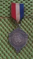 Medaille :Netherlands  -  Baarn - W.S.V Dudok De Wit - 1962   / Vintage Medal - Walking Association . - Nederland