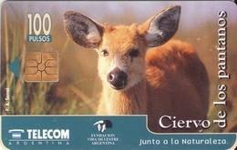 TARJETA TELEFONICA DE ARGENTINA. FAUNA, CIERVO DE LOS PANTANOS - G6A. (155) - Tarjetas Telefónicas