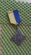 Medaille :Netherlands  -   W.S.V - D.O.S Barchem - 1969  / Vintage Medal - Walking Association . - Nederland