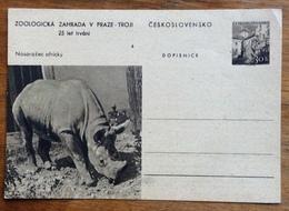 ZOOLOGIA RINOCERONTE  DOPISNICA CARTOLINA POSTALE CEKOSLOVACCHIA  30 H - 1945-1992 Repubblica Socialista Federale Di Jugoslavia