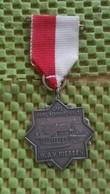 Medaille :Netherlands  -   Cafe Rest. Schwarzwald - W.S.V Riessen ( Rijssen  / Vintage Medal - Walking Association . - Nederland