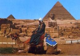 Giza - He Great Sphinx - Formato Grande Viaggiata – E 14 - Gizeh