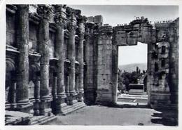 Lebanon - Baalbeck - Temple De Bacchus Interieur - Formato Grande Viaggiata – E 14 - Cartoline