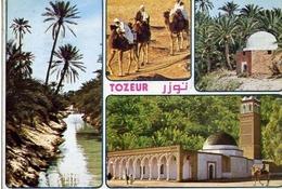 Tozeur - Formato Grande Viaggiata – E 14 - Cartoline
