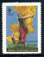 ERINNOFILIA / La Vittoria Del Grano - Erinnofilia