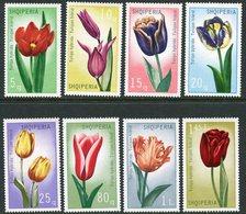 ALBANIA 1971 Tulips MNH / **,  Michel 1472-79 - Albanie