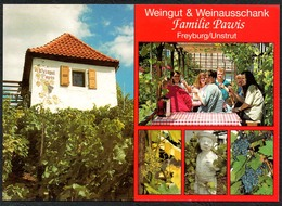 D1640 - TOP Freyburg Weingut Familie Pawis - Verlag Bild Und Heimat Reichenbach - Qualitätskarte - Freyburg A. D. Unstrut