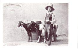 COLLECTION DE TYPES DE CORFOU - Laitier - Griechenland