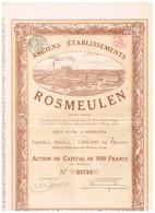 Titre Ancien - Anciens Etablissements ROSMEULEN - Titre De 1920 - DECO - - Industrie
