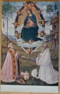 San Gimignano L' Assunta E I Due Santi Gregorio E Bernardo Tavola Di Bernardino Pinturicchio Nuovo Palazzo Del Podesta - Gemälde, Glasmalereien & Statuen