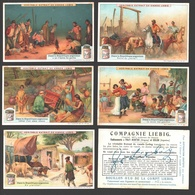Liebig - Vintage Chromos - Series Of 6 / Série Complète - Dans La République Argentine - En Français - Argentina - Liebig