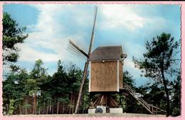 Kasterlee - Standaard Molen - 1963 - Kasterlee