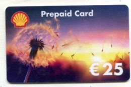 GC 18395 Shell - Gift Cards