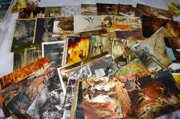 LOT DE 70 CARTES GROTTES - Cartoline