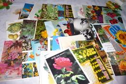 LOT DE 45 CARTES FLEURS - Cartoline