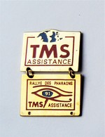 Pin's RALLYE DES PHARAONS TMS Assistance - Pa/Ce - Pin's