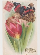 Cpa Fantaisie Gaufrée Type Viennoise / Angelot Avec Ailes De Papillon Donnant Un Baiser à Une Femme Sortant D'une Tulipe - Papillons