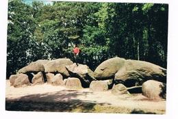 HUN-51    BORGER : Hunebed ( Dolmen) - Dolmen & Menhirs