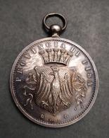 Grande Medaglia D'argento Provincia Di Pisa Al Merito  L. Giorgi - 1914-18