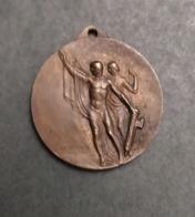 Medaglia Littoria Comune Di Camaiore - 1914-18