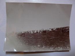PHOTO ANCIENNE - TUNISIE : Marché Arabe De Fernana (sud De Tabarka) - Africa