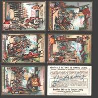 Liebig - Vintage Chromos - Series Of 6 / Série Complète - Enseignes Et étendards - En Français - Liebig