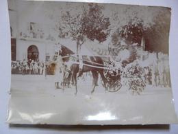 PHOTO ANCIENNE - TUNISIE : Tunis - Fête Du Printemps - Attelage - Africa