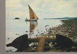 C. P. -  PHOTO - DZAOUDZI - LA COTE A MARÉE BASSE - 77 - OPTICAM - Comoren