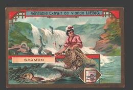Saumon - Liebig - Vintage Chromo - Signed Liebig On The Back - Liebig
