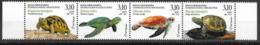 BOSNIA, CROAT, 2019, MNH, MOSTAR, REPTILES, TURTLES, TORTOISES, 4v - Schildkröten